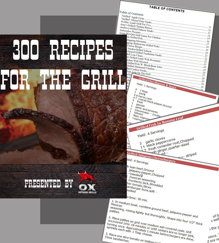 300 Grill Recipes